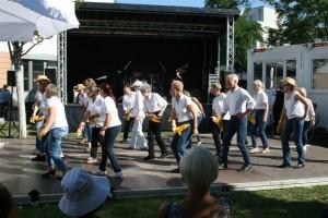 TSK-Bunter Nachmittag LD 30-08-2019 (009)